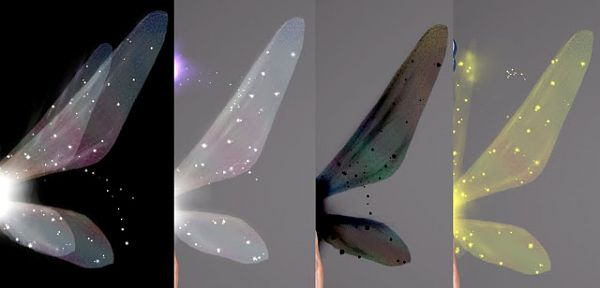 Sims 3 wings, replacement, dragonfly