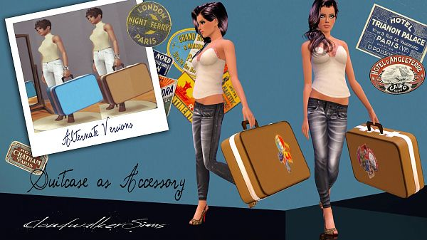 Sims 3 suitcase, accessory