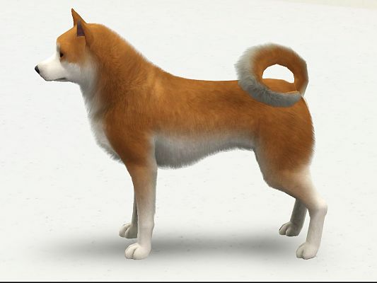 Sims 3 dog, decor, objects