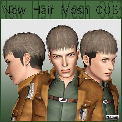Sims 3 hair, hairstyle, males