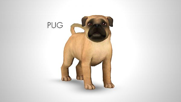 Sims 3 dog, puppy, pet