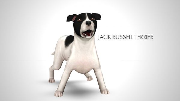 Sims 3 pet, pets, dog, Jack Russell Terrier