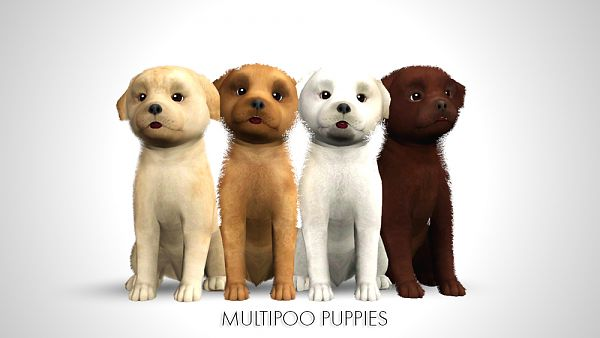 Sims 3 pet, pets, dog, Multipoo