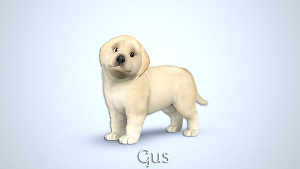 Sims 3 pet, pets, dog, puppy