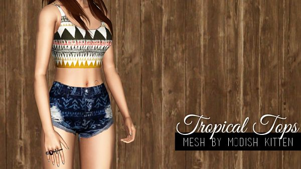 Sims 3 outfit, fashion, clothing, female, top, sims3
