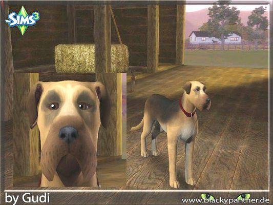 Sims 3 decor, animals, horse, dog, objects