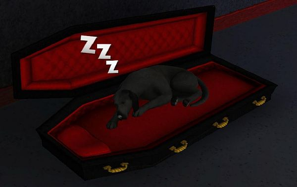 Sims 3 bed, furniture, pet