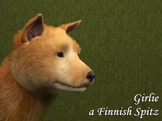 Sims 3 dogs, pets, animal