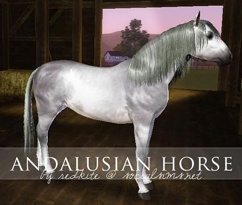 Sims 3 horse, animal, pet, andalusian, arabian