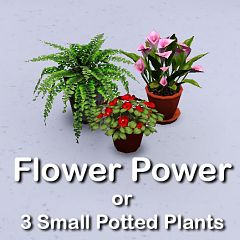 Sims 3 pot, flower, decor, objects