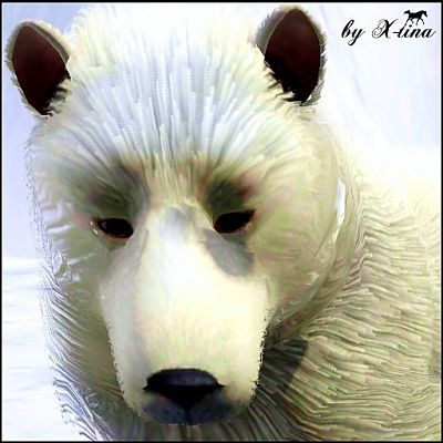 Sims 3 polar bear, animal, pet