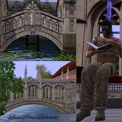 Sims 3 bridges, windows, decor, objects, fences, build