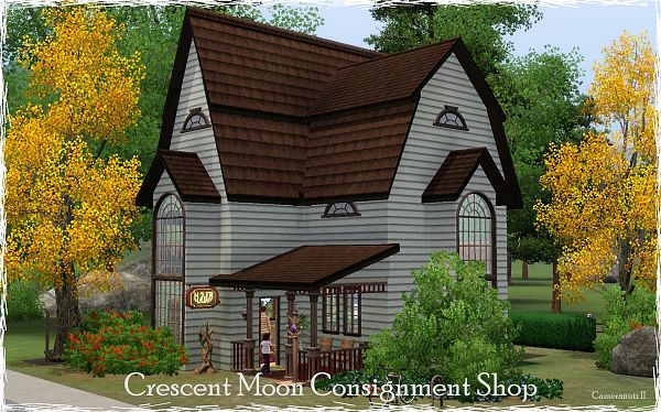 Sims 3 lot, community, consignment, shop