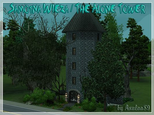 Sims 3 tower, castle, lot