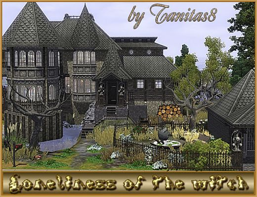 Sims 3 house, lot, residential, witch