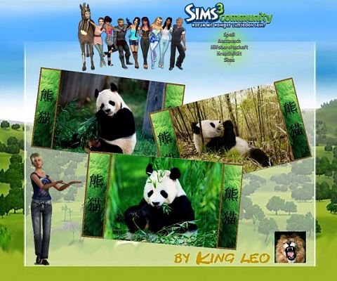 Sims 3 photo, wallpaper, decor, posters