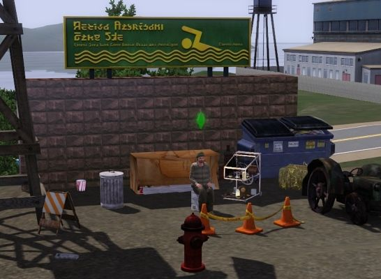 Sims 3 trash, collection, hobo, objects, decor