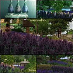 Sims 3 lavanda, flori, camp, decor