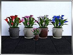 Sims 3 flowers, plants, calla, decor
