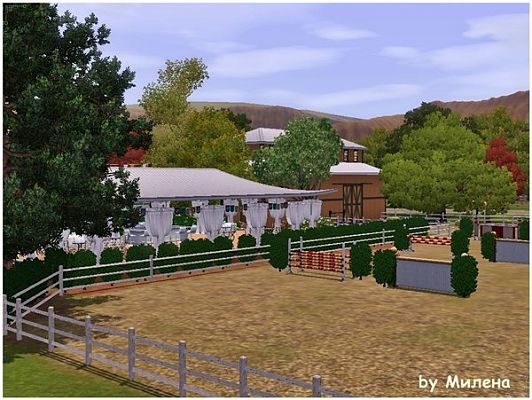 Sims 3 center, horse, community