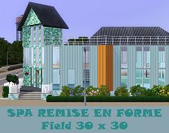 Sims 3 SPA, commercial, lot, building