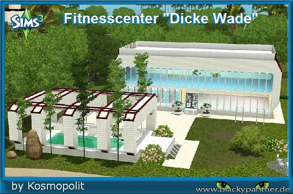 Sims 3 lot, community, fitness