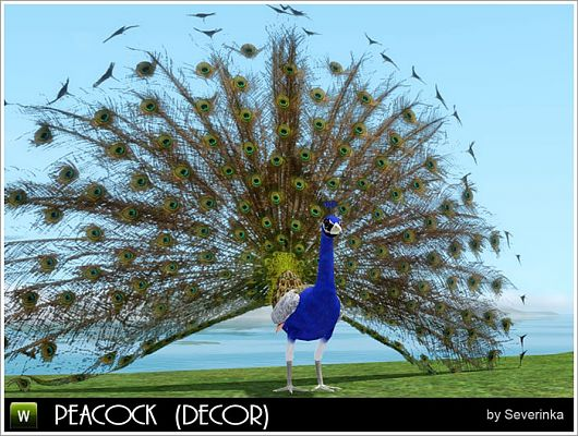Sims 3 peacock, object, decor