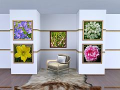 Sims 3 photos, paintings