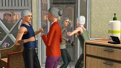 Sims 3 mod, override