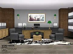 Sims 3 office, study