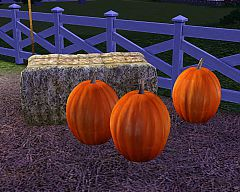 Sims 3 pumpkin, decorative, object, objects