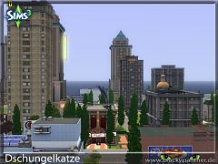Sims 3 city, neighbourhood, world
