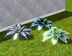 Sims 3 plant, flower, garden, decor