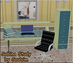 Sims 3 study, desk, chair, room